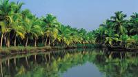 4-Night Best of Kerala Tour