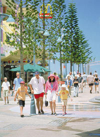 Small-Group Gold Coast Beaches and Mt Tamborine Wine Tour