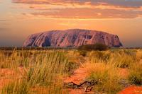 3-Day Uluru-Kata Tjuta and Kings Canyon 4WD Small-Group Eco-Tour from Alice Springs