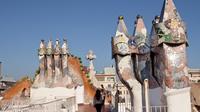 Skip the Line: Casa Batllo and Gaudi Guided Walking Tour in Barcelona