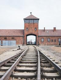 2 Nights in Krakow with Guided Half-Day Tour of Auschwitz-Birkenau or Wieliczka Salt Mine