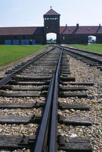 Auschwitz-Birkenau Tour from Krakow with Private Round-Trip Transfer