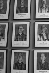 Auschwitz-Birkenau Tour from Warsaw with Private Round-Trip Transport