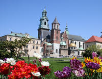 Small-Group Krakow Old Town Walking Tour Including Rynek Glwny, Mariacki and Wawel Cathedral