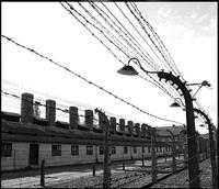 Private Tour: Auschwitz-Birkenau Tour from Krakow