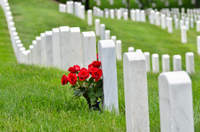Flowers for the Fallen at the Arlington National Cemetery*