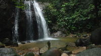 Full-Day Rainforest Adventure from Kuala Lumpur