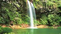 Half-Day Lambir Hills National Park Tour from Miri