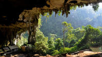 Historical Niah National Park Day Trip from Miri
