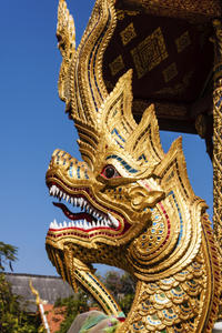 Private Penang Island Tour Including Snake Temple