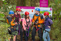 Rotorua Forest Zip Line Canopy Adventure