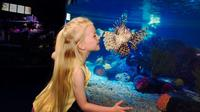 SEA LIFE Great Yarmouth General Admission