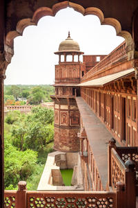 Viator Exclusive: Private Taj Mahal and Agra Fort Tour, Dine with a View and Optional Photographer