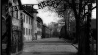 1 Day Trip - Auschwitz Museum and Salt Mine all inclusive with local guides