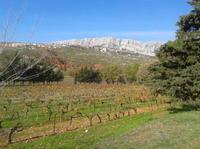 Cotes de Provence Wine Tour from Aix-en-Provence*