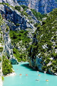 Provence Lavender Fields Tour from Aix-en-Provence