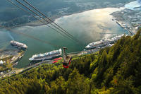 Juneau Shore Excursion: Whale-Watching Cruise and Seafood Meal on Mt Roberts