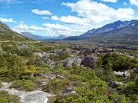 Skagway Shore Excursion: City and White Pass Summit Tour with Lunch