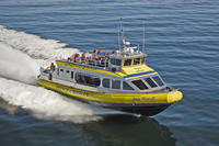 Best of Victoria Tour: Whale Watching, Butchart Gardens and Sunset Cruise from Vancouver
