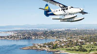 Whale Watching to Victoria from Vancouver and Return Seaplane Flight
