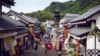1-Day Pass for Edo Wonderland Nikko Edomura