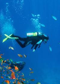 Huatulco Beginner or Certified Scuba Diving