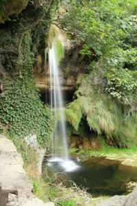 Sierra Madre de Oaxaca Day Trip: Finca La Gloria Coffee Plantation and Waterfall Swim