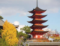 14-Day Classic Japan Tour: Nikko, Hakone, Takayama, Hiroshima, and Kyoto from Tokyo