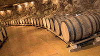 Half-Day Chianti Afternoon Tour from Pisa