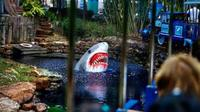 Visite de la ville de Houston et entrée au Downtown Aquarium