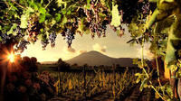 Wine Tasting on the slopes of Mount Vesuvius from Naples