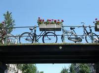 Amsterdam Bike Tour: Off the Beaten Path