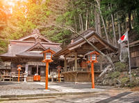 Mt Fuji Private Tour with Sengen Shrine Visit from Tokyo