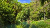 Allerton Garden Guided Tour