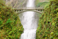 Portland Combo: Hop-On Hop-Off Sightseeing Trolley and Columbia River Gorge Tour