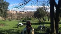 Electric Bike Rental in Madrid