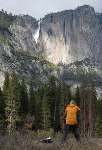 Experience Yosemite: Beginner or Advanced Photography Lesson