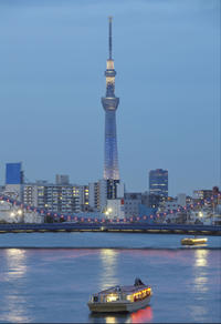 Private Tokyo Transfer: Tokyo Port to Central Tokyo Hotels and Maihama
