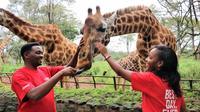 Africa Fund for Endangered Wildlifes Giraffe Centre and David Sheldricks Elephant Orphanage Tour from Nairobi