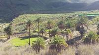 Small Group Jeep Safari from Gran Canaria