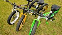 48 Hour Bicycle Rental
