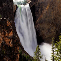 Yellowstone National Park Tour from Jackson