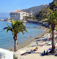 Round-trip Ferry Service from Dana Point to Catalina Island