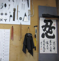 Ninja School: Ninja for a Day