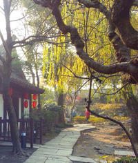 Day Trip to Shaoxing from Hangzhou