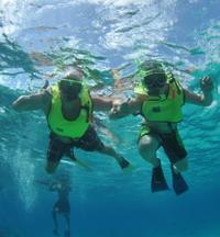 Caribbean Snorkel Tour in Grand Turk's Coral Reef