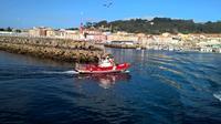 Coastal Escape Trek and Tapas Small-Group Tour of Vigo Bay Including a Ferry Boat Ride