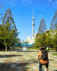 Tokyo by Bike: Skytree, Kiyosumi Garden and Sumo Stadium