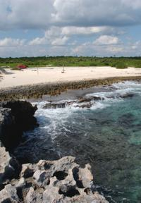 Combo Tour: Cozumel Island and Tequila Tour, Playa Mia Beach Park and Discover Mexico Park