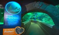 SEA LIFE Sunshine Coast Underwater World Aquarium Entrance Ticket